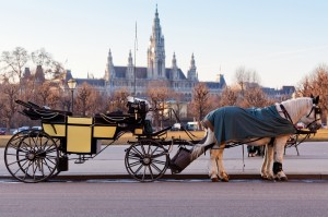 Fiaker carriage in Vienna, Austria ueber uns